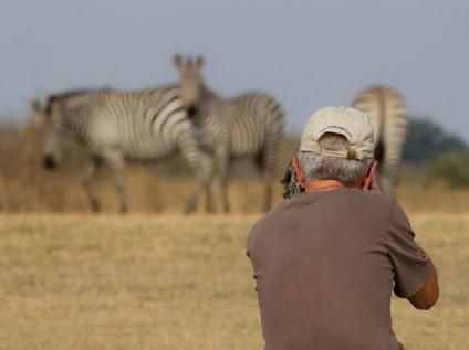 Photographing zebras South Luangwa, Zambia