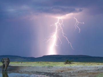 A dramatic landscape during a storm in Madikwe Game Reserve, South Africa
