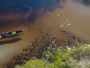 Aerial view of a mokoro on the Okavango Delta