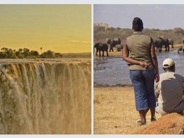 Victoria Falls and Hwange, Zimbabwe, safari with Africa Geographic