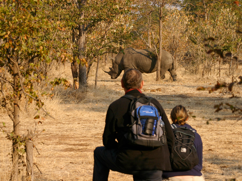 Bush walking in Victoria Falls with Africa Geographic