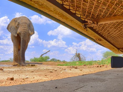 The hide at Madikwe, South Africa