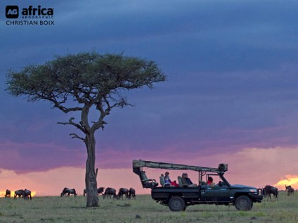 safari vehicle, wildlife, Maasai Mara National Park, Kenya