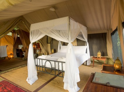 accommodation, luxury tent, Sentinel Mara Camp, Masai Mara National Reserve, Kenya