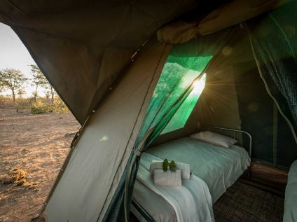 Kruger wilderness walking safari, Africa Geographic - Balule camp